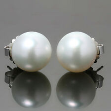 South Sea Cultured Pearl 14k White Gold Stud Earrin