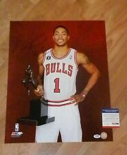 DERRICK ROSE 'CHICAGO BULLS' SIGNED 16X20 PICTURE 1 *PSA/DNA 4A07264