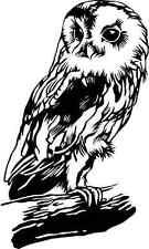 CUTE OWL ON A BRANCH TREE CAR DECAL STICKER