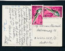 Karte aus Dschibuti nach Linz, Motiv Papagei  13/4/15