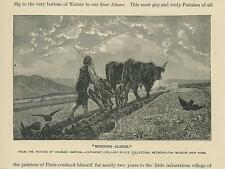 ANTIQUE ALSCASE MORNING FARM FURROW GARDEN BLACK CROWS BIRDS OXEN PLOW ART PRINT