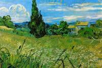 Vincent Van Gogh Green Wheat Field with Cypress - Poster 24x36 inch