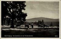 BAD HARZBURG AK um 1930 Vieh Kuh Weide mit Blick Fürstenschneise und Brocken