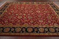 All-Over Floral BURGUNDY and BLACK Agra Oriental Area Rug Hand-Knotted Wool 8x10