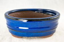 Oval Blue Glazed Shohin Bonsai, Cactus & Succulent Pot 6