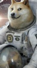 525 Dogecoin crypto currency (DOGE)