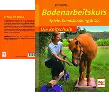 Bodenarbeitskurs - Spiele, Schrecktraining & Co -  Die Reitschule (Urte Biallas)