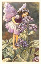 Flower Fairy Postcard: Fairy in Purple Smells Delicate Heliotrope Flower