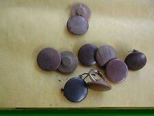 Regio Esercito  ,WWII  ,Bellissimi bottoni in frutto per taschino.