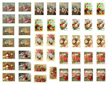 Vintage Image Seed Catalog Art Prints Decal Dollhouse Miniature Découpage MIN900