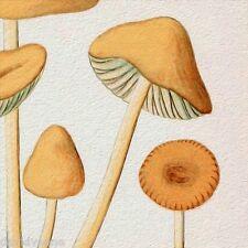 Funky Orange Mushroom pattern 12 x 12 inch mono deluxe Needlepoint Canvas