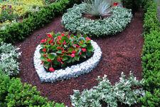 XL Herz 58xx57x10cm Grab Deco Pflanzenschale Grabschmuck Grabgestaltung Blumen