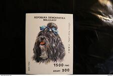 Malagasy 1003H souvenir sheet block MNH Dog Shih Tzu 1991