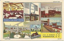 O'Donnell's Sea Grill Restaurant in Washington DC Postcard