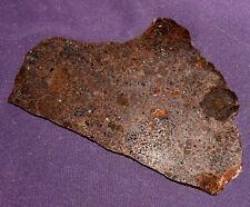 Selten!  Neufund!  Meteorit Mesosiderit NWA 11761 poliert  96x63x2,3mm 39,7g 陨石