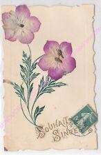 CPA FANTAISIE DECOUPIS Souhaits sincères fleurs violettes ca1908