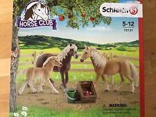 """Schleich 72131  """"  Haflinger Familie auf der Weide Pferde  Set  """"  ==NEU=="""