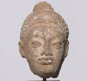 Gandhara Stucco Buddha Head '100 to 400 AD'