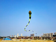 2018 new3D 60 meters Stunt huge SNAKE POWER Sport Kite outdoor toy free shipping