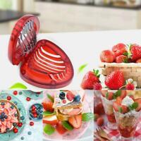 Strawberry Home Stainless Steel Blade Kitchen Tool Cake Garni Top