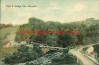 NORTHUMBERLAND VINTAGE  POSTCARD PATH AND BRIDGE END ALLENDALE c.1904
