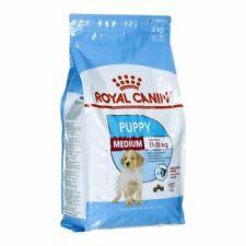 3182550708180,Karma Royal Canin SHN Medium Junior (4 kg ),royal canin