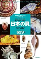 Japanese seashells illustrated Field guide Picture book Encyclopedia FS NEW