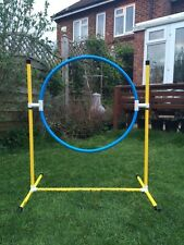 Dog Agility Coloured Deluxe Hoop by Jessejump