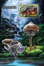 Mozambique 2016 MNH Mushrooms 1v S/S Cogumelos Nature Boletus Fungi Stamps