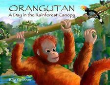 Orangutan: A Day In The Rainforest Canopy-ExLibrary