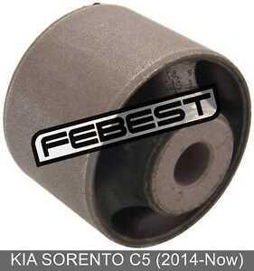 Differential Mount Bushing For Kia Sorento C5 (2014-Now)