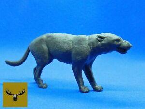 Hyaenodon Horridus Snarling 1/13 Scale Resin very detailed model