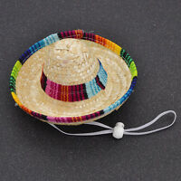1 Pc Fashion Dog Cat Mexican Sombrero Hat Pet Costume Supplies Gift Random