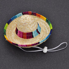 1 Pc Fashion Dog Cat Mexican Sombrero Hat Pet Costume Supplies Gift Random