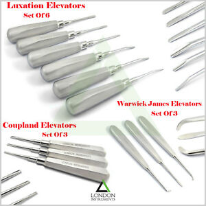 12Pcs Elevators Oral Micro Surgery Root Tooth Extraction Kit Dental Instruments