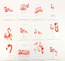12 All Occasions Flamingo Greeting Cards Birthday, Christmas, Thank You MULTI001