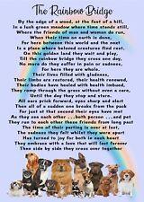 Rainbow Bridge for Dogs Pet Bereavement purse Memorial keepsake Card Poem