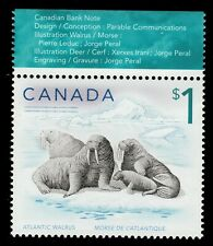 Canada #1689(3) 2005 $1.00 Canadian Wildlife - ATLANTIC WALRUS MNH CV$2.00