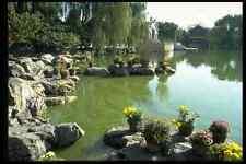 630016 el jardín de rocas de el sueño de Rojo cámaras Beijing A4 Foto Impresión