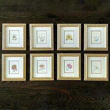 Vintage Framed Botanical Wall Art Decor Prints Set Of 8 - Gold Framed
