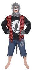 Mens Adult One Size Werewolf Wolfman Halloween Costume