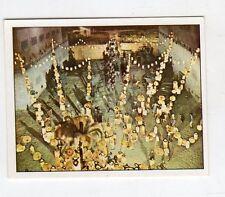 figurina - PANINI PINOCCHIO 1972 - numero 293