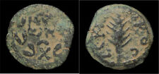 Judaea Porcius Festus procurator under Nero  AE prutah