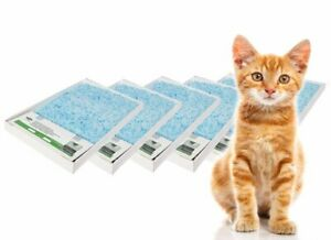 ScoopFree Litter Tray Replacement Tray Bulk 6 pack
