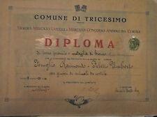 WW2 PNF TRICESIMO DIPLOMA MEDAGLIA ALLEVAMENTO ANIMALI DA CORTILE att5