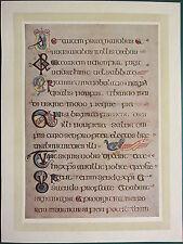 1914 stampa ~ illuminante PIASTRA dal Book of Kells ~ ST contrassegnare una pagina di testo