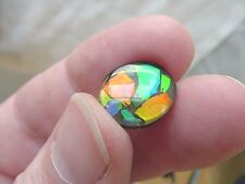 (J-487) Green orange Red oval Ammolite fossil shell loose cabochon nautilus