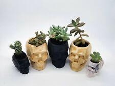 GEOMETRIC SKULL Succulent Plant Pot Pencil Makeup Brush Holder Gothic Art Gift