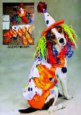 NWT ZACK & ZOEY Class CLOWN Dog Pet Costume Set - Halloween Outfit & Hat Wig - S