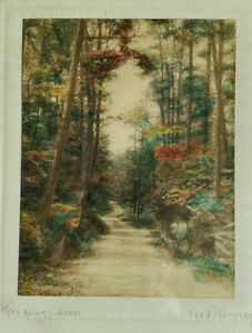 Vintage Framed Fred Thompson Hand-tinted Autumn Woods